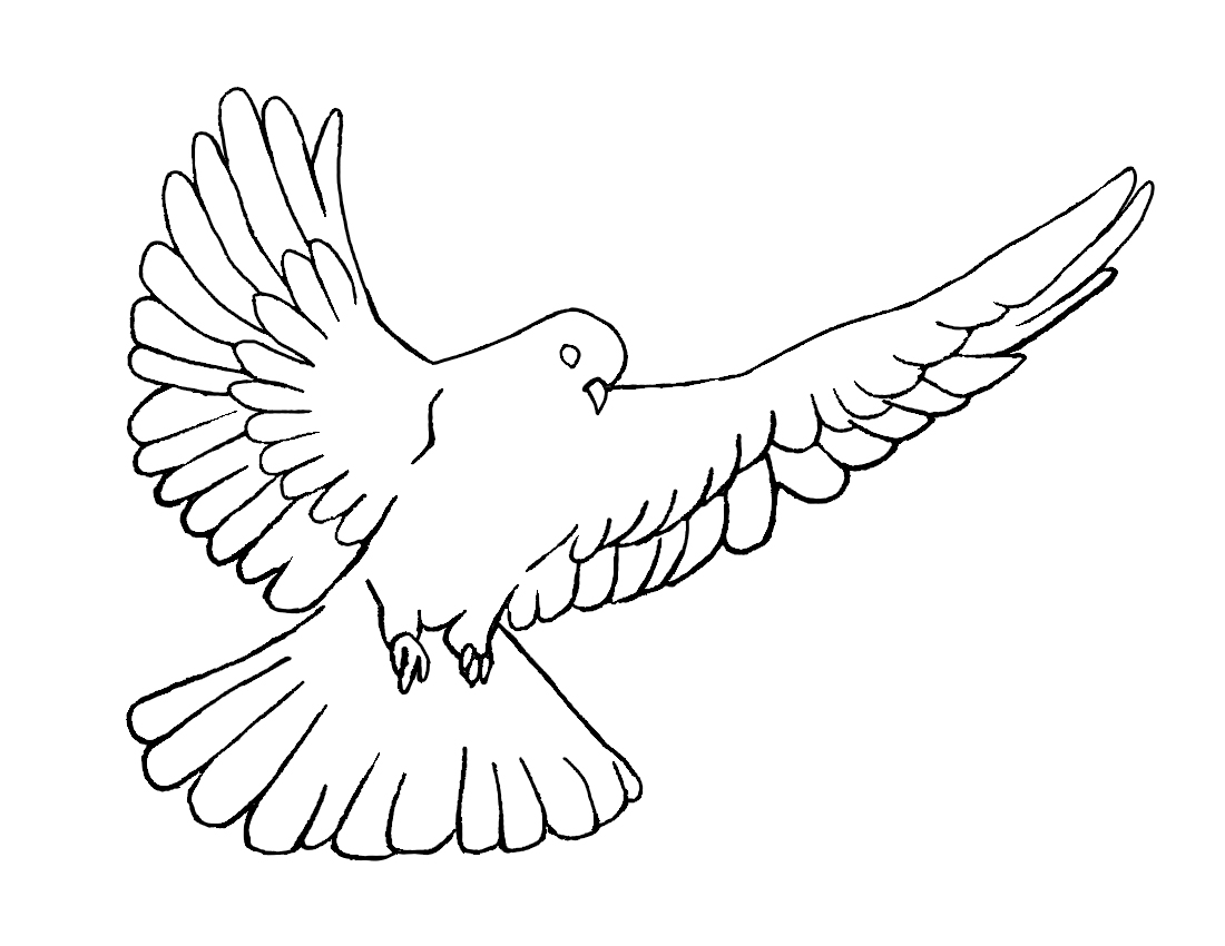 Holy Spirit Dove Coloring Page Free Image