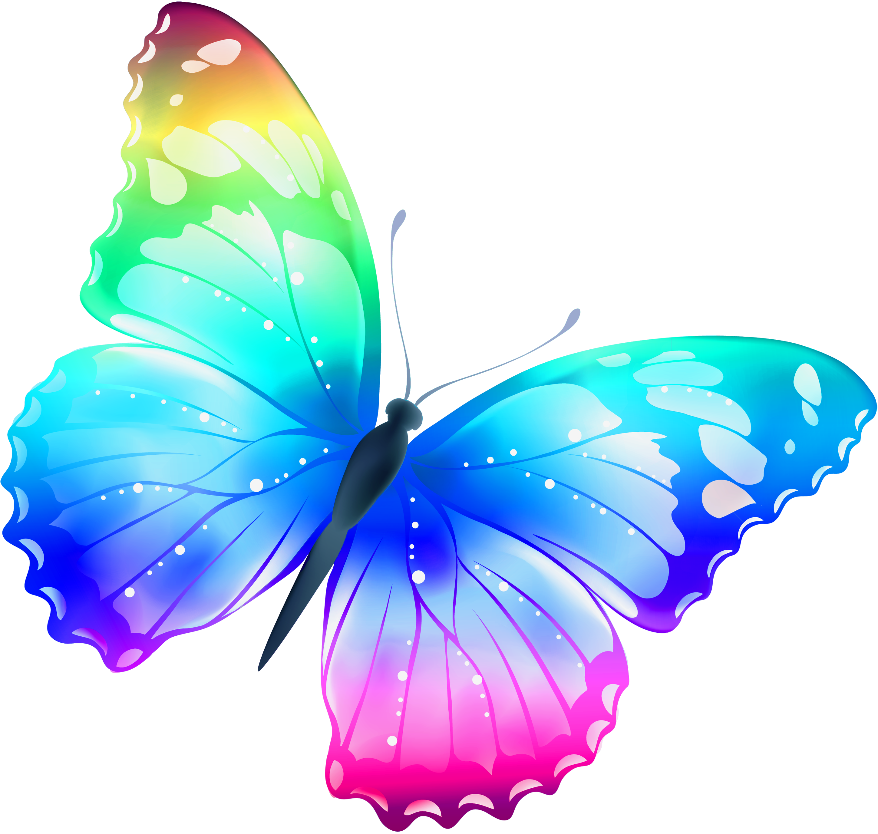 Butterfly colorful. Transparent png clip art