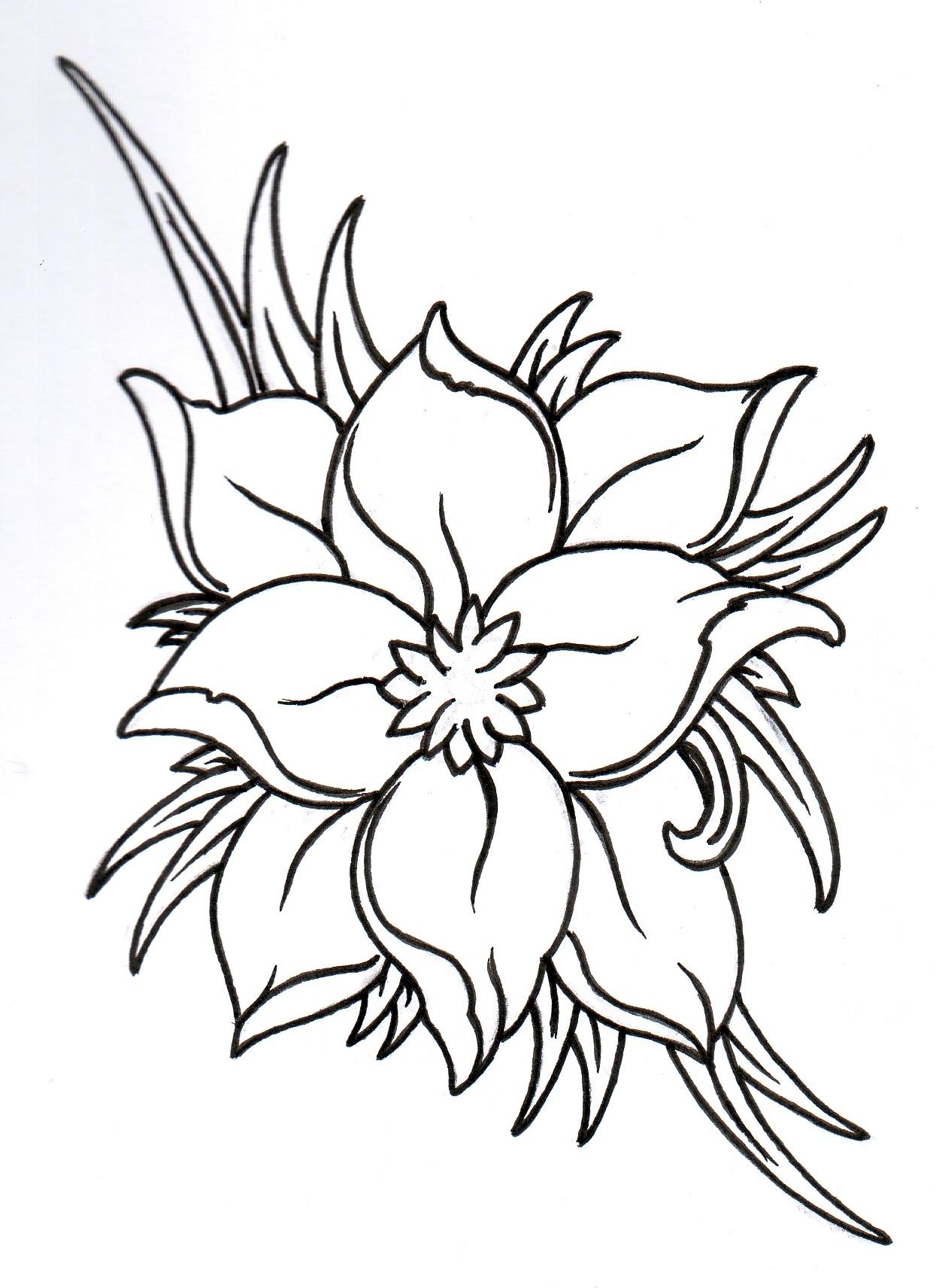 Lotus Flower Tattoo Outline Free Image