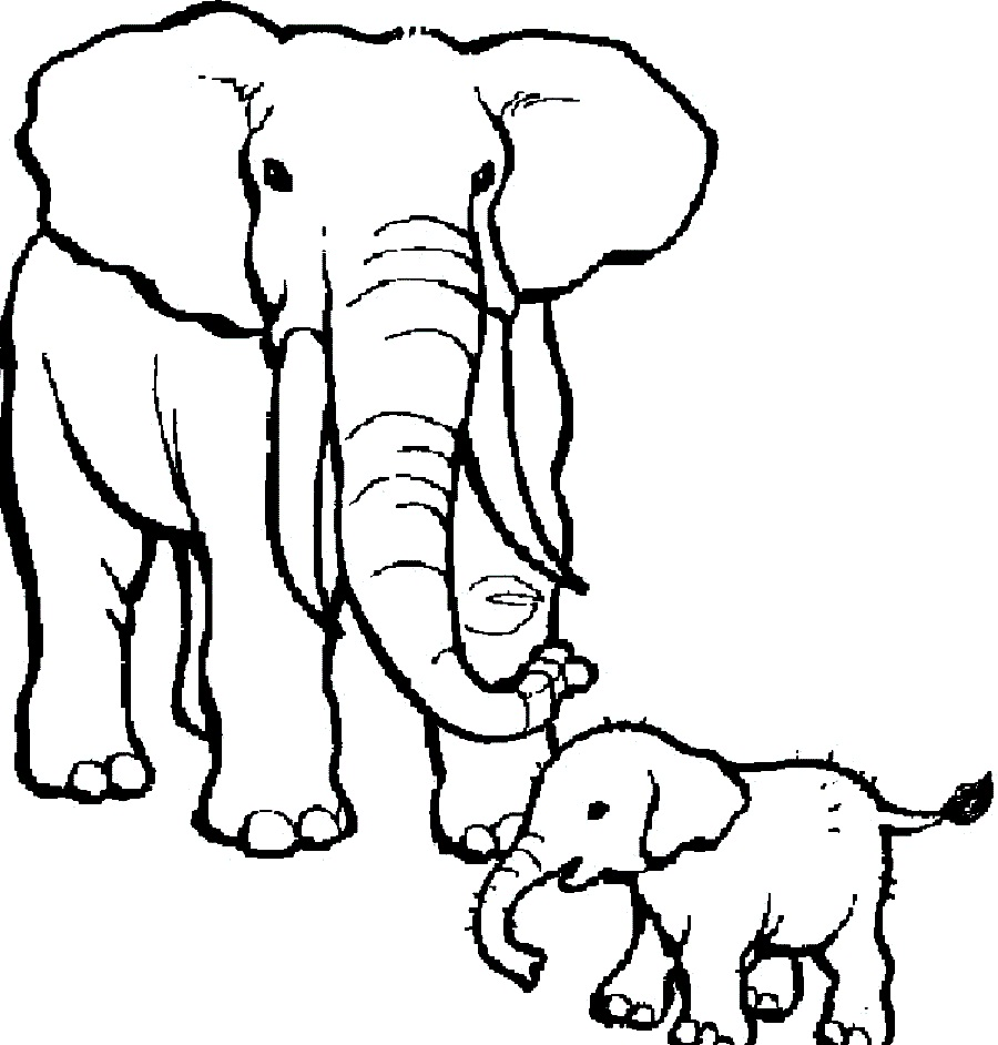 - Circus Elephant Coloring Page Drawing Free Image