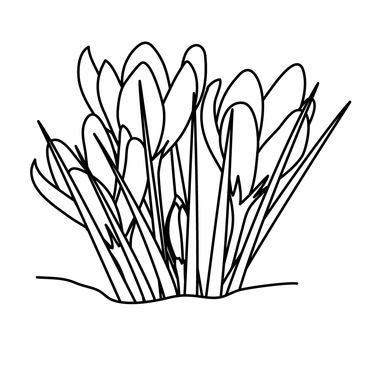 Spring Flowers Clip Art Black And White N13 Free Image