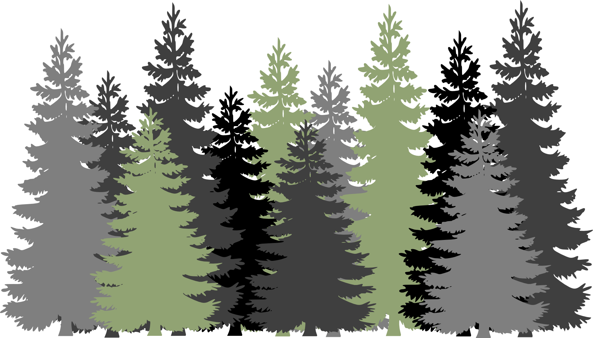 Forest Trees Drawing Free Image