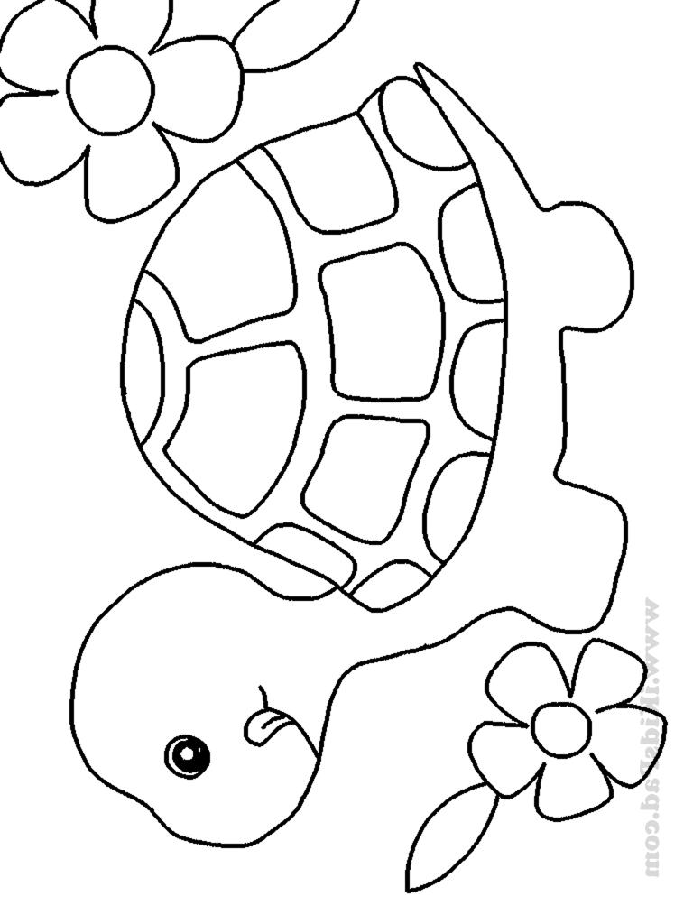 Baby pig coloring printable   Baby animal drawings, Animal ...   1024x768