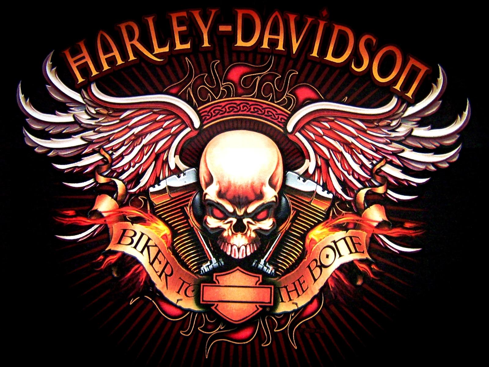Harley davidson wallpaper. Logo skull bikes motorcycle