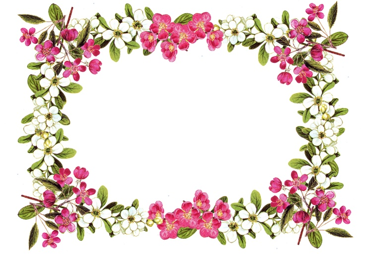 Vintage Flower Frame Border Png Free Download Digital Scrapbooking Clipart Free Image