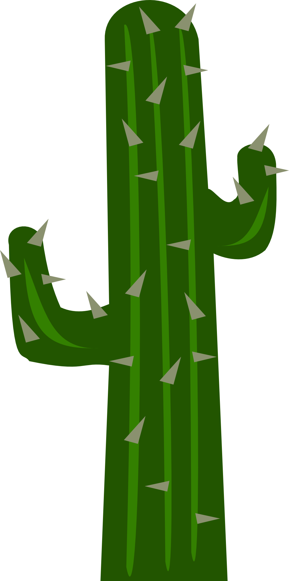Green Cactus As A Picture For Clipart Free Image Download