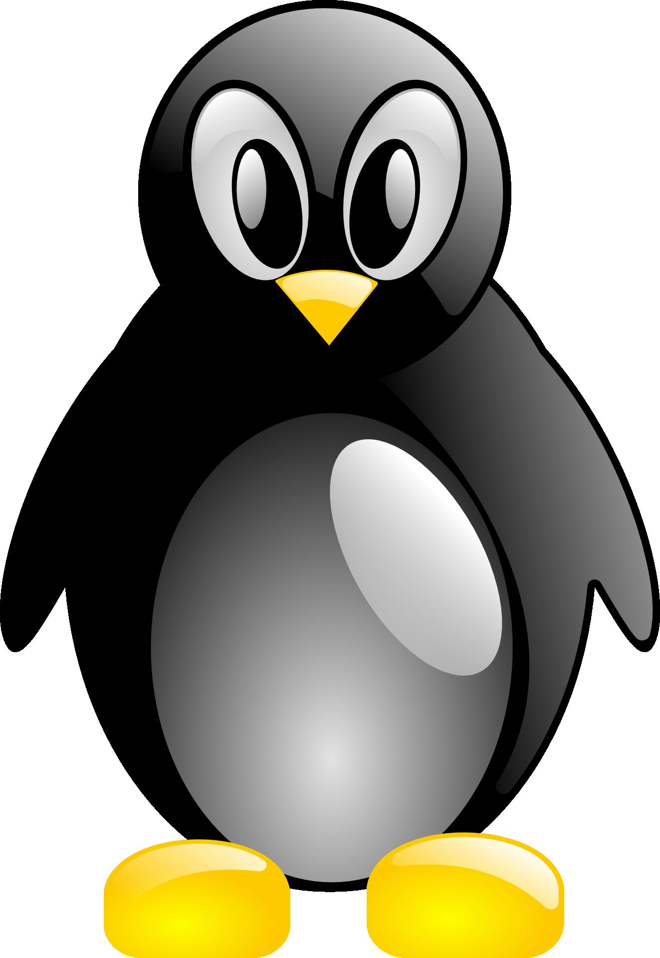 Penguin Linux Tux Animal Bird free image