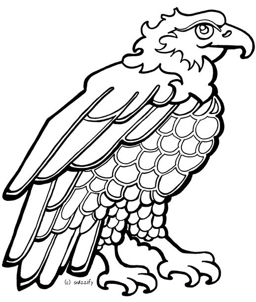 Bald Eagle Coloring Pages Kids free image