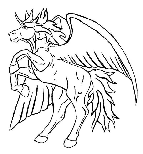 Pegasus Unicorn Coloring Pages Free Image
