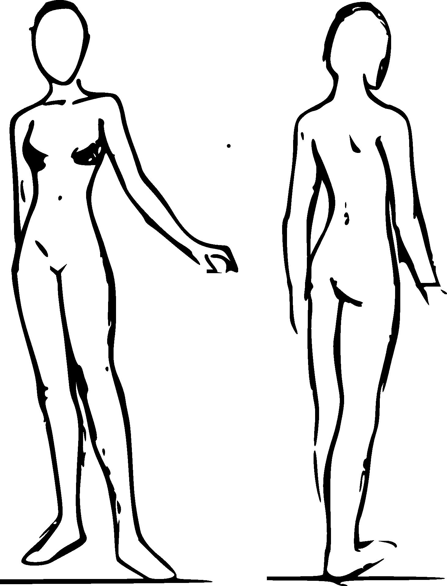 Female Bodies Sketch Free Image