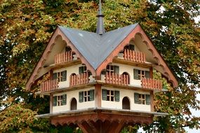 Wooden aviary for birds