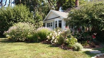 village house among blooming plants in spring garden