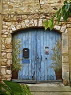 old blue wooden door with plants painting in stone wall