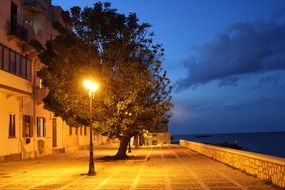 evening embankment area tree lamppost wall building blue sky