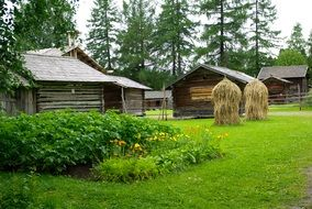 wooden buildings, haystacks and vegetable bed at farm, finland
