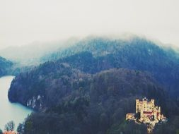hohenschwangau castle, medieval fortress on forested mountain, germany, bavaria