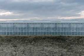 long glass greenhouse under cloudy sky