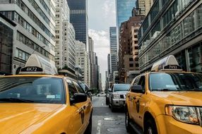 Yellow New York taxi cabs