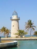 lighthouse and palm trees on the sea coast