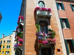 colorful potted flowers on balconies in old city, italy, venice