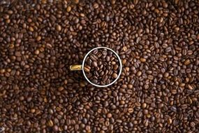 coffee beans in cup and on table, background