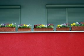 colorful flower boxes on red balcony of modern building