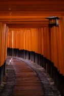 Torii, walkpath in fushimi inari shrine, japan, kyoto