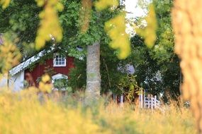 view of scandinavian village house through trees