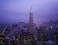 Transamerica Tower in cityscape at dusk, usa, california, san francisco
