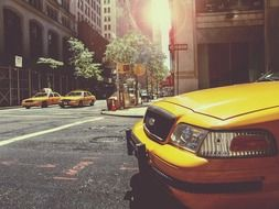 yellow taxi cabs on street, usa, manhattan, new york city