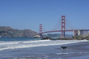view of golden gate bridge from ocean coastline, usa, california