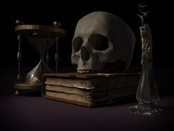 vanity still life, skull on book and crossbones