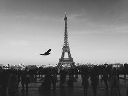 crowd of people at eiffel tower, france, paris