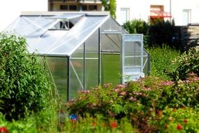 greenhouse garden glass house