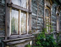 old grey house wooden board windows