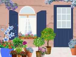 potted plants and flowers on street at facade, illustration