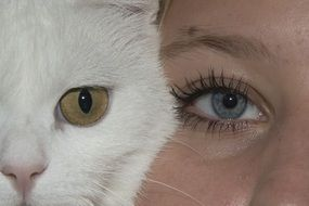 cat's and girl's eyes close up