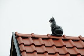 cat sculpture on the roof of the house