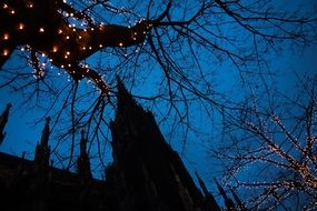 Christmas tree lights against the background of the church