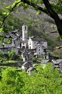 grey stone houses and church on mountain side at summer, switzerland, ticino