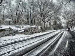 road in central park at winter, usa, manhattan, new york city