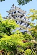 castle of the Japanese style among the trees