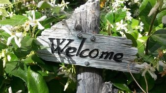 welcome, wooden sign in garden among flowers