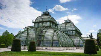 palmhouse in schonbrunn palace