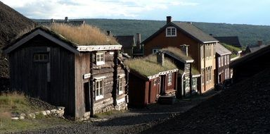 old village houses with grass on roofs on street, norway, røros