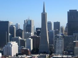 Transamerica Pyramid in cityscape, usa, california, san francisco