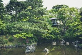 japanese house with pond with green garden