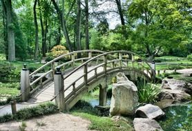 arched bridge in japanese garden