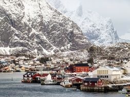 colorful houses on coast at snowy mountains, norway, lofoten
