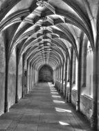 long ornamented arched vault, black and white